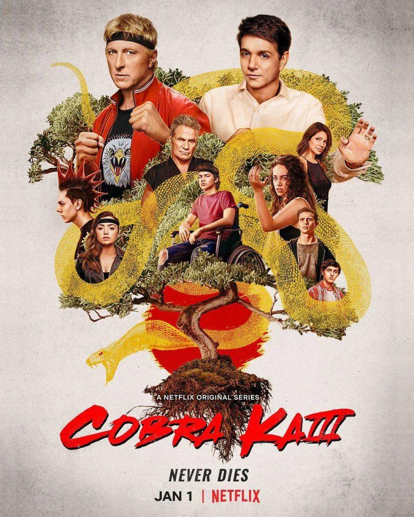 影集《眼鏡蛇道館cobra kai season 3》影評 這是一部優秀的美劇,劇中有我喜歡的角色,也有我討厭的角色