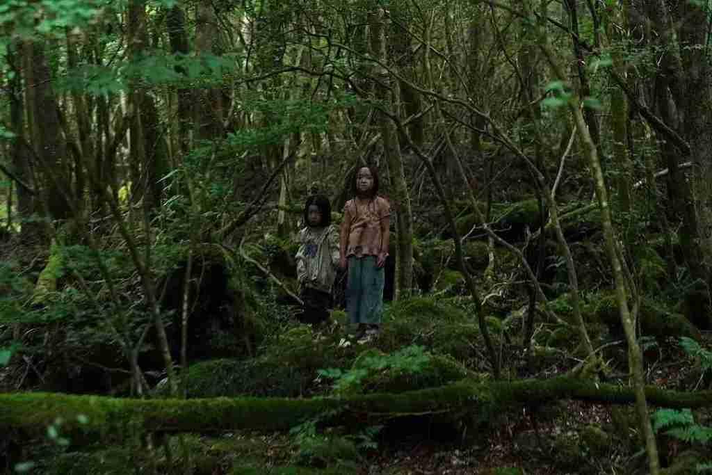 日本恐怖電影《樹海村 犬鳴村2 suicide forest village》影評評價,劇情解說 3