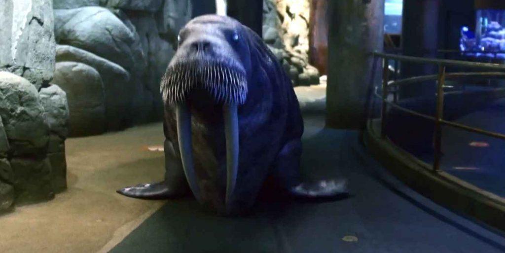影評《死亡水族館 喪屍水族館aquarium of the dead 》劇情、結局:這部電影是在用馬克思的理論,讓美國的腐敗和對立矛盾透明化 04