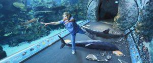 影評《死亡水族館 喪屍水族館aquarium of the dead 》劇情、結局:這部電影是在用馬克思的理論,讓美國的腐敗和對立矛盾透明化 03